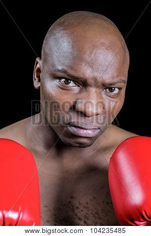 Portrait of serious bald boxer in red gloves against black background