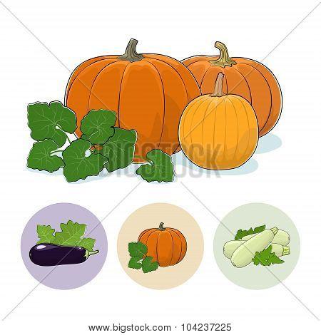 Icons Pumpkin, Eggplant,  Zucchini