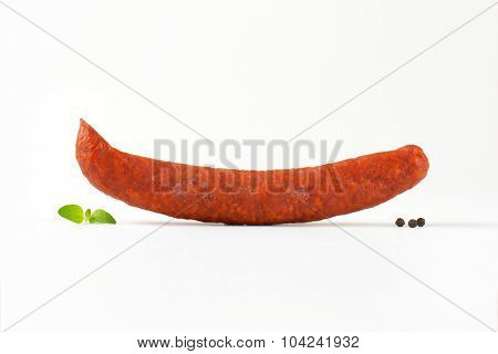single pepperoni sausage on white background