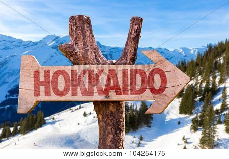 Hokkaido wooden sign with winter background