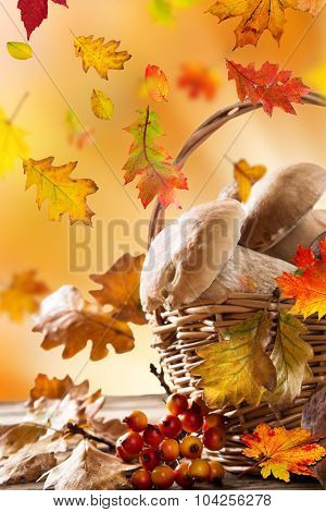 boletus mushrooms in a basket on wooden background