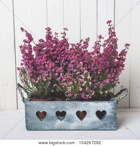 Flower decoration over white vintage background