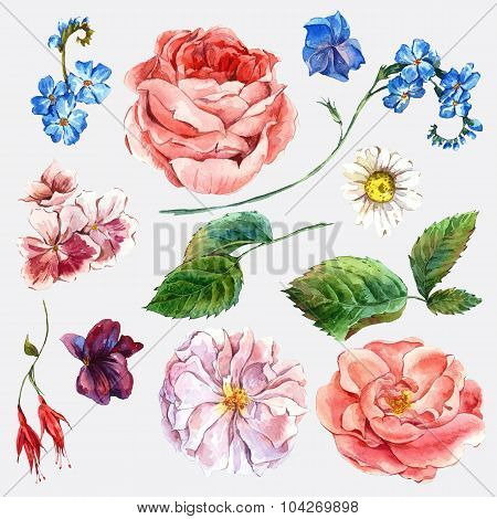 Set vintage watercolor bouquet of roses and wildflowers