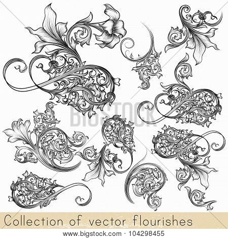 Set Of Vector Calligraphic Flourishes And Swirls