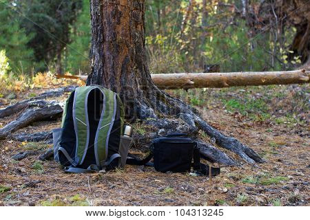 Backpack And Bag On Ground In  Forest