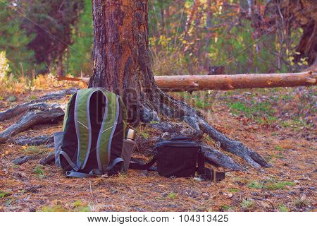 Babackpack And Bag On Ground In  Forest
