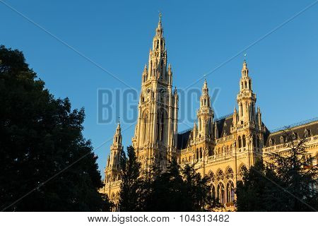 Rathaus In Vienna In The Morning