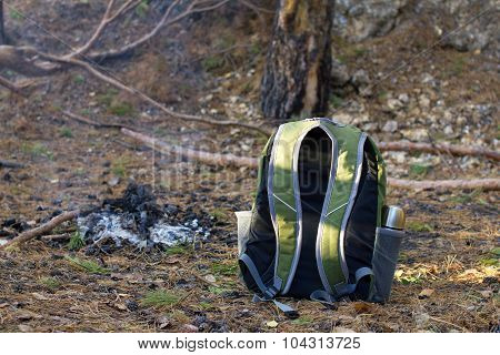 Backpack And  Campfire In Conifers Forest