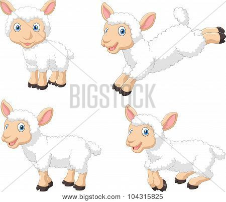 Cute cartoon sheep collection set, isolated on white background