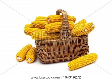 Basket With Ears Of Corn On A White Background