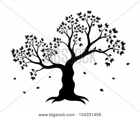 Vector illustration of tree with leaves in black on white background