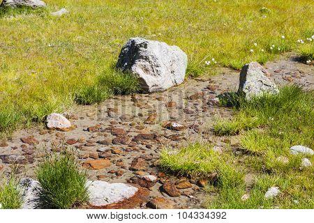 Little Stream Through Grass
