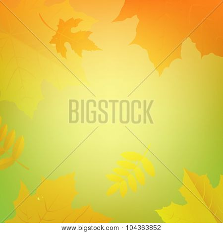 Autumn Background With Colored Leaves With Gradient Mesh, Vector Illustration