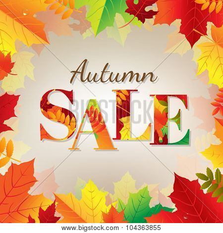 Autumn Sale Banner With Color Leaves With Gradient Mesh, Vector Illustration