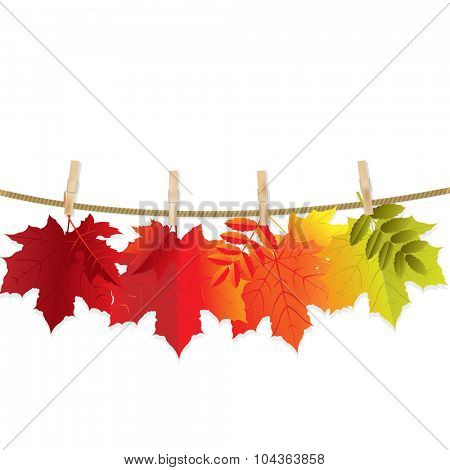 Autumn Leaves With Gradient Mesh, Vector Illustration
