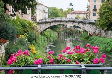 Vicenza' Bridges
