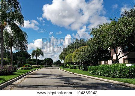 Empty Residential Street Florida Neighborhood