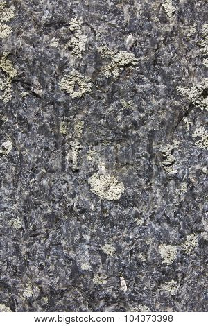 Rough Gray Granite Background - Gray Granite Abstract for Wallpaper or Background