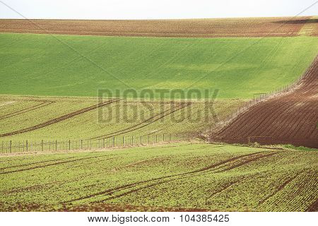 Table Cape Farmland
