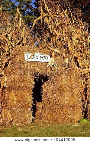 Corn Fort