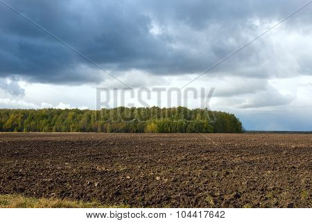 A Plowed Field Near The Forest