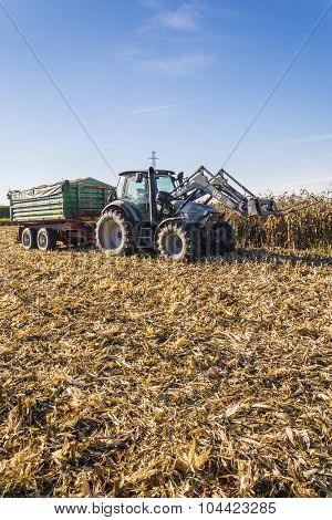Farm Tractor Trailer In A Field Of Corn