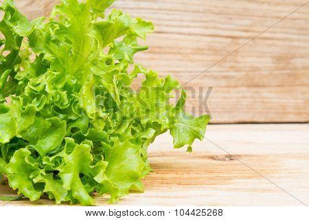 Coral Vegetable