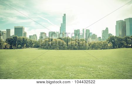 Central Park In New York City Without People