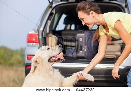 Attractive young girl and puppy near transport in park
