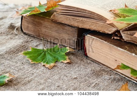 Vintage Book With Autumn Maple Leaves