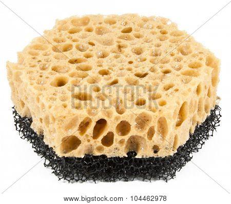 China sponge on a white background