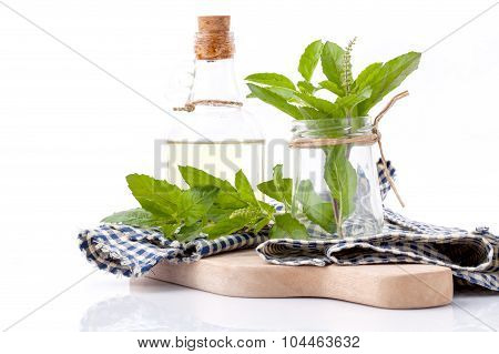 Branch Of Fresh Holy Basil In Bowl On Cutting Board Isolate On White Background.