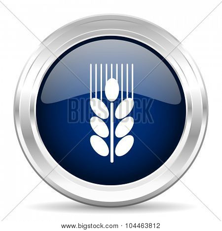 grain cirle glossy dark blue web icon on white background