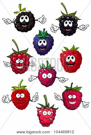 Funny raspberry, blueberry and blackberry
