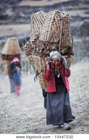 Tibetan women in national clothes