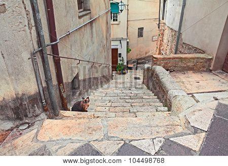 Corner Of The Old Town Atessa