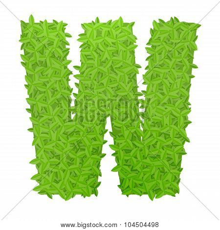 Uppecase letter W consisting of green leaves