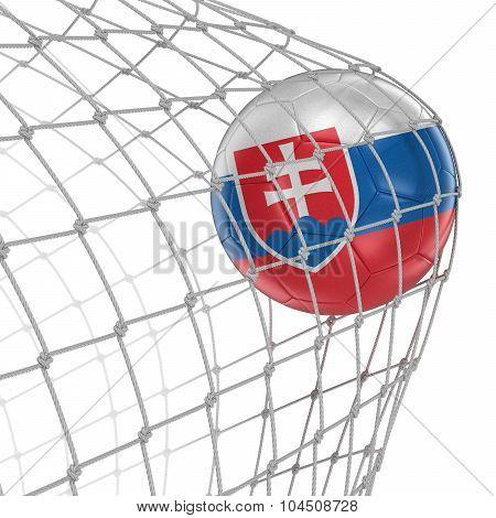 Slovak soccerball in net