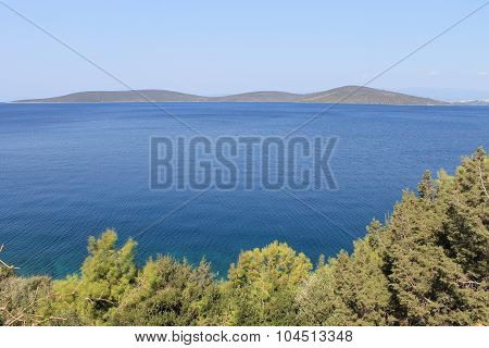 The coast of the Aegean Sea in Turkey, water, grass, trees