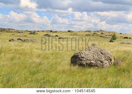 Large Stones Lying On The Green Plain