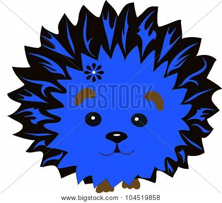 hedgehog  blue