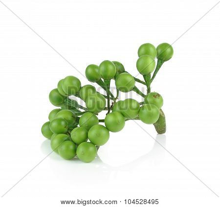 Solanum Torvum On White Background