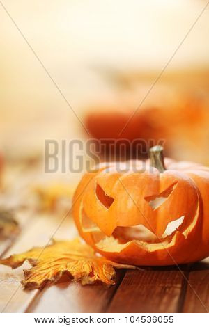 Halloween jack o' lantern background