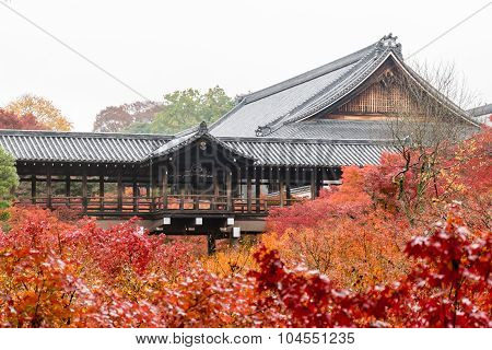Autumn Foliage In Tofukuji Temple, Kyoto, Japan
