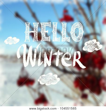 Chalk drawn calligraphy ''Hello Winter'' on winter blurred background. Happy Winter theme.
