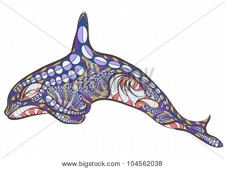 Ethnic Killer Whale