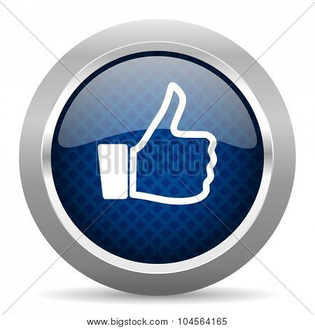 like blue circle glossy web icon on white background, round button for internet and mobile app
