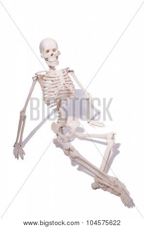 Skeleton in funny concept on white