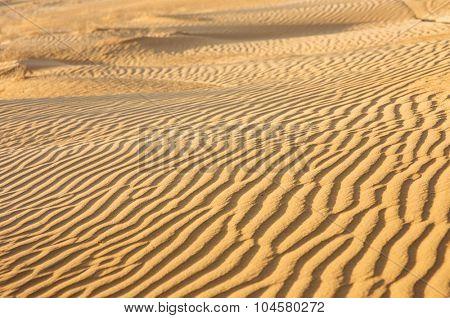 Desert with Sand Dunes