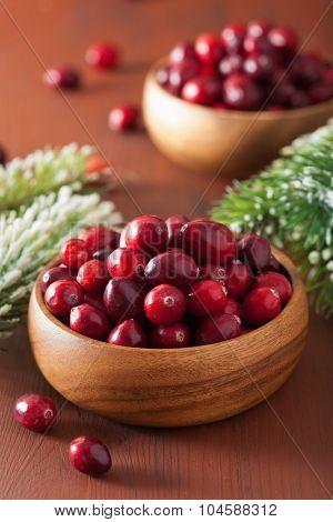 fresh cranberry in wooden bowls, winter decoration